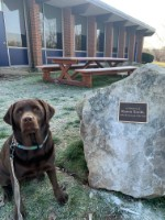 Dog with Karen Smith plaque